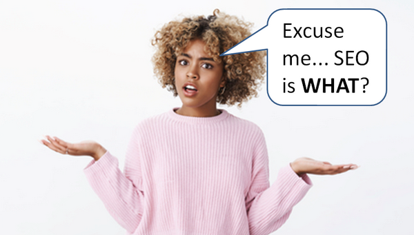 "female questioning with ""Excuse me... SEO is WHAT?""e"