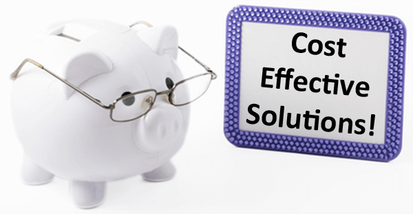 piggy bank with glasses - sign beside it with Cost Effective Solutions!