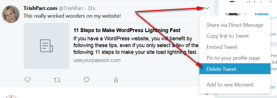 a screen print showing how to delete my before tweet