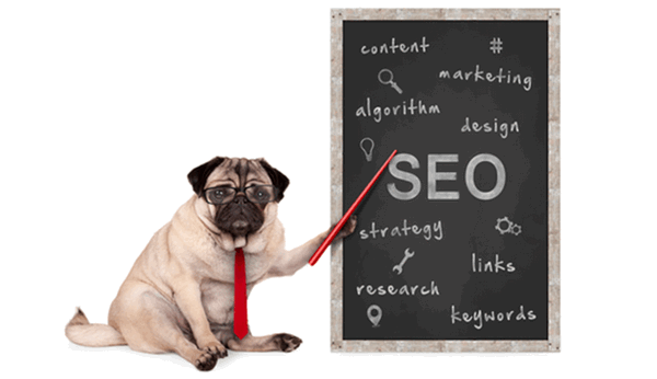 dog sitting to the left of a chalkboard pointing to the writing on it; SEO, content, marketing, etc.