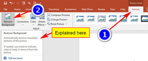screen print showing how to remove background in an image in PowerPoint
